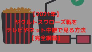 【2021年】ヤクルトスワローズ戦をテレビやネット中継で見る方法【完全網羅】