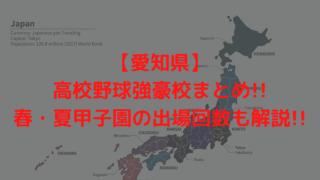 【愛知県】高校野球強豪校まとめ!!春・夏甲子園の出場回数も解説!!